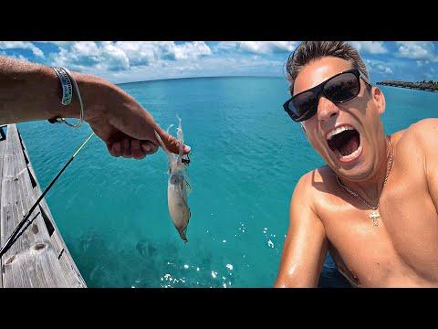Что я Нашел на Мальдивах. Ловлю Лобстера и Рыбу Прямо под Виллой на Воде. Черепахи и Скаты