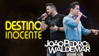João Pedro & Waldemar - Destino Inocente (Clip Oficial)
