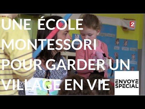 Nouvel Ordre Mondial - Envoyé spécial. Une école Montessori pour maintenir Voivres en vie - 16 novembre 2017 (France 2)