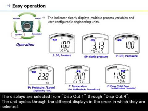 7. Pressure Transmitter (DPharp Series) - Display Capability -