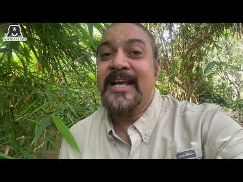 Earth Day message by WSOS CEO and Co-founder Kartick Satyanarayan