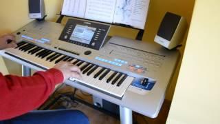 Bonnie Tyler - It's A Heartache - Yamaha - Keyboard - tyros 4 (Cover)