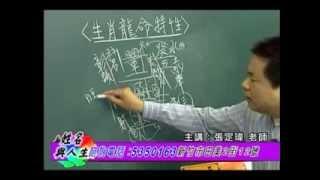 張定瑋老師-姓名與人生-生肖[龍]命名特性