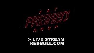 Fat Freddy's Drop Hopepa Sting