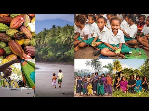 Brother y Cool Earth- un año de ayuda en Papúa nueva Guinea