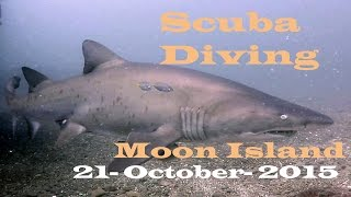 Scuba Diving - Moon Island - Swansea Heads 29-10-15 -GoPro Hero4