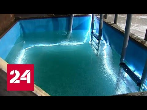 Красноярцев будут штрафовать за крещенские купания