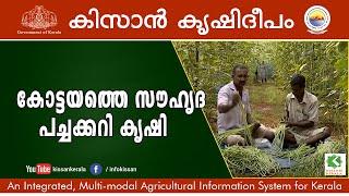 Friendship through Vegetable Cultivation - Kottayam