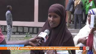 OMN: Oduu Guyyaa (Fulbaana 14, 2019)