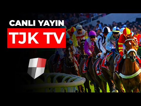 TJK TV | Canlı Yayın