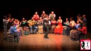 Compagnie Antonio Gades - Carmen
