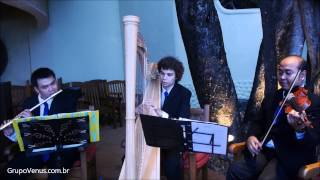 I Was Born To Love You - Instrumental Wedding Song for Ceremony on Violin