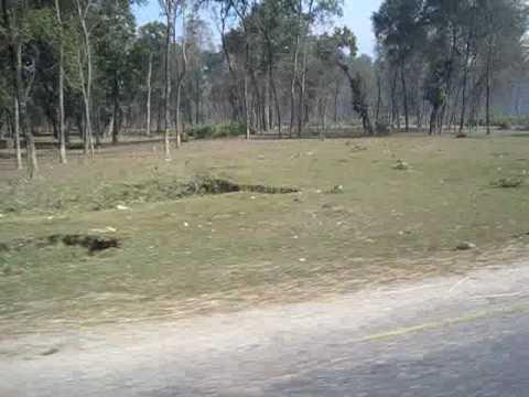 highway tour – www.aaryatravel.com