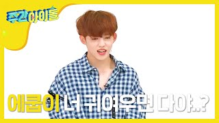 (Weekly Idol EP.308) SEVENTEEN's Leader SCOUPS lost choreography