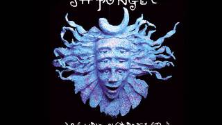 Nine Inch Nails - Down In It (Shpongle Mix)