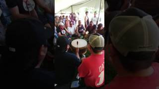 Black Bear #1 - Ottawa Summer Solstice Pow Wow 2017