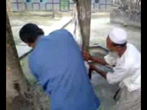 Rahmat Ullah khalu goat prep