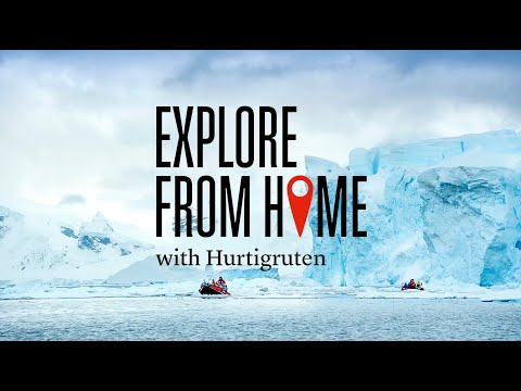 Explore from home with Hurtigruten - Antarctica