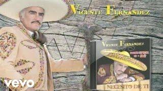 Vicente Fernández - Tengo