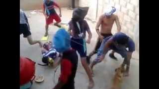 Harlem Shake - El perrito