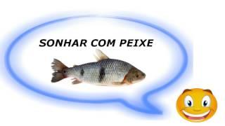 Sonhar com Peixe  - Significado