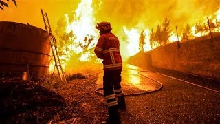Portugal Forest Fires Kill at Least 61