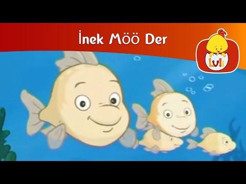 İnek Möö Der - İnek Möö Der 2 Balık (THE COW GOES MOO s1e2)