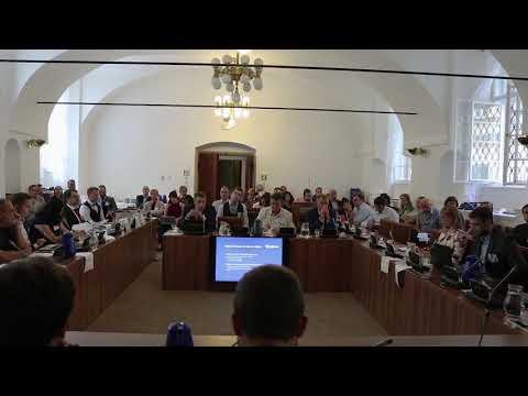 Michal Nulíček (Rowan Legal) – Článek 13 návrhu DSM