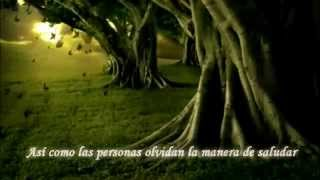 3 Doors Down - Here without you (Sub Español Latino)