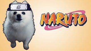 Música de batalha do Naruto em cachorrês (ORIGINAL)