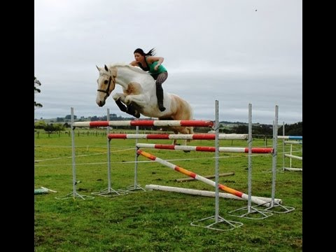 """""Free Riding"""" BAREBACK AND BRIDLELESS Jumping 6ft+ ..."