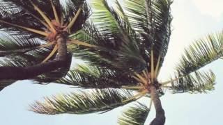 Nicola Cruz-Lea (Alex Castro Remix)