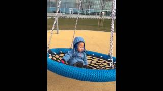 Spider web swing