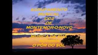 Agrupamento Musical CO2 - F.Risso 2012