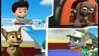 patrulha canina ryder chama os filhotes para salvar o trem