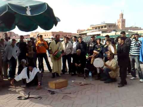 Snake Charmers Marrakech Morocco