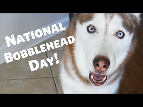 Happy National Bobble Head Day from Laika the Husky!