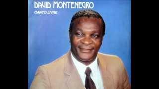 David Montenegro - A ponte sobre as águas turvas