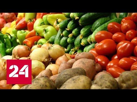 Мировые цены на продовольствие растут почти год  