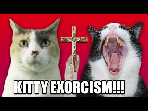 How To Perform a Kitty Exorcism!