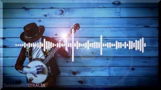 Dirtydisco - Shake Your Banjo