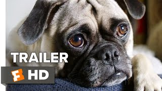 Dog Days Teaser Trailer #1 (2018) | Movieclips Indie