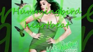 Katy Perry - Hummingbird Heartbeat (Lyrics)