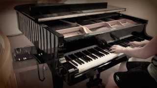 Yann Tiersen - Le Moulin (Benedikt Waldheuer Piano Cover)