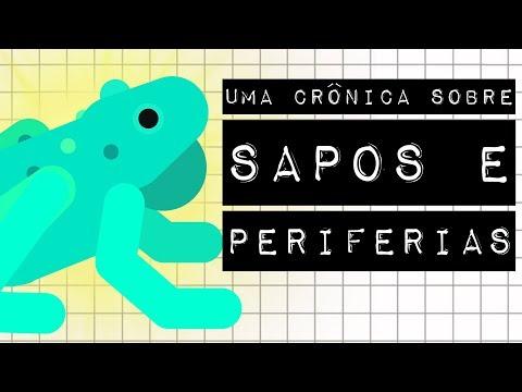 UMA CRÔNICA SOBRE SAPOS E PERIFERIAS - As Crônicas do Mundo no #meteoro.doc