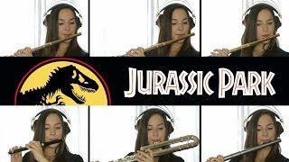 Jurassic Park Theme - Flute Cover