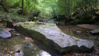 Stream in Appalachia - Nature Sounds Only