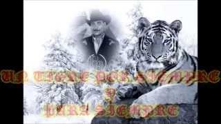 LOS TIGRES DELNORTE Y RAUL HERNANDEZ ( CARIÑO DONDE ANDARAS )