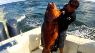 Slack Tidez -- Spearfishing, Surfing, Fishing Trinidad