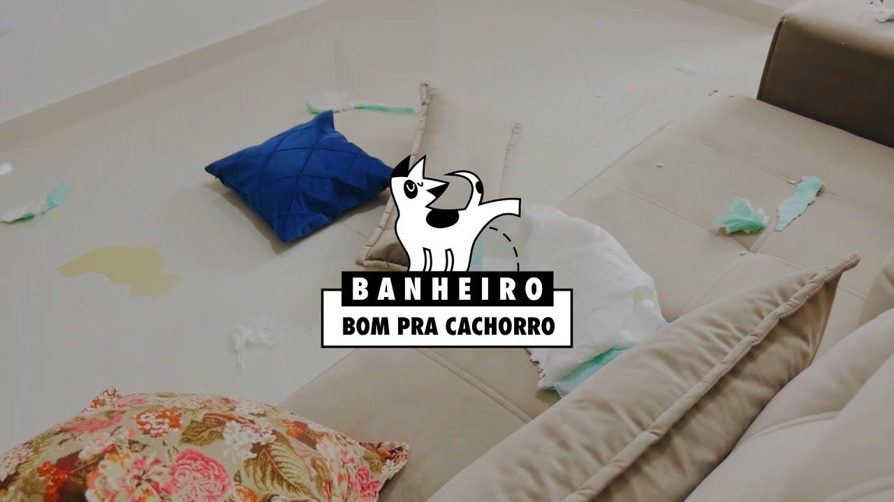 Projeto Banheiro Bom pra Cachorro  - Seja H3C